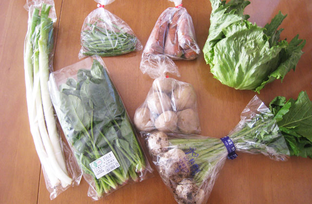 大地を守る会野菜お試しセット