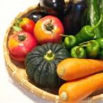一番安全な野菜宅配はどこ?宅配野菜の放射能検査の違いを比較してみた結果