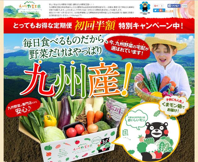送料無料で宅配野菜を利用するなら、九州野菜王国