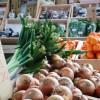【食材宅配の選び方】利用者タイプ別おすすめ食材宅配を紹介