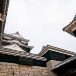 松山で利用できる食材宅配ベスト5選