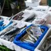 お魚にこだわっている食材宅配ベスト3