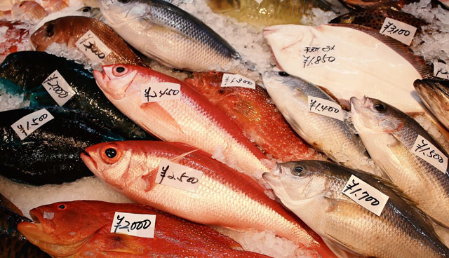 らでぃっしゅぼーやの魚
