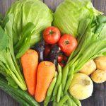 らでぃっしゅぼーやの野菜のおすすめポイントを調べてみた結果