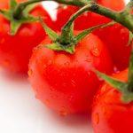 パルシステムの農薬に対する考え方について調べてみた結果