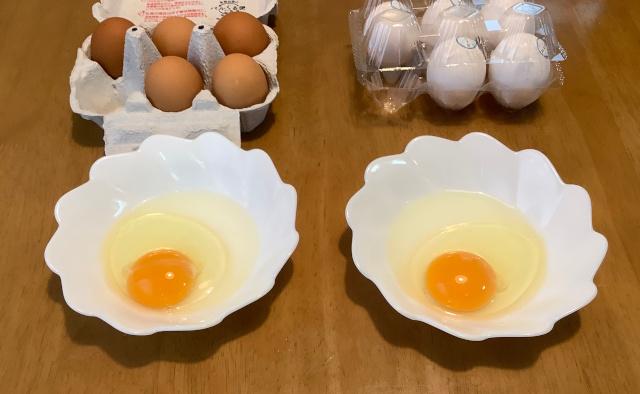 目玉焼き、ゆで卵、卵かけご飯、3つの方法で食べ比べ